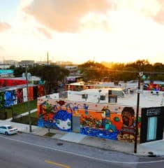 wynwood_18