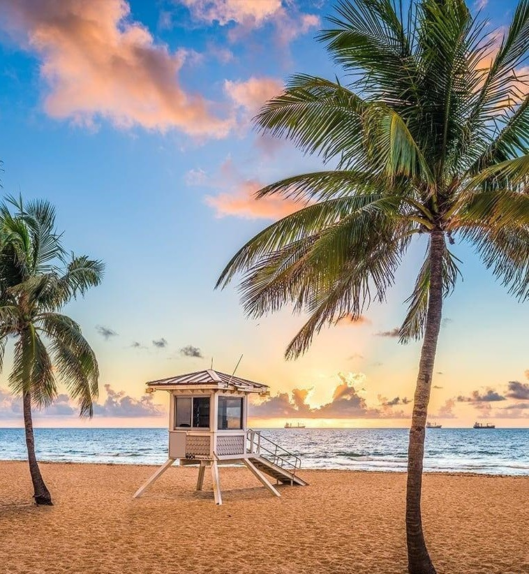 Lauderdale Beach photo10