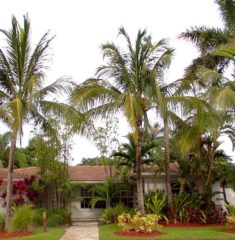 Miami Shores Estates photo06