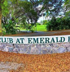 Emerald Hills - 15 - photo