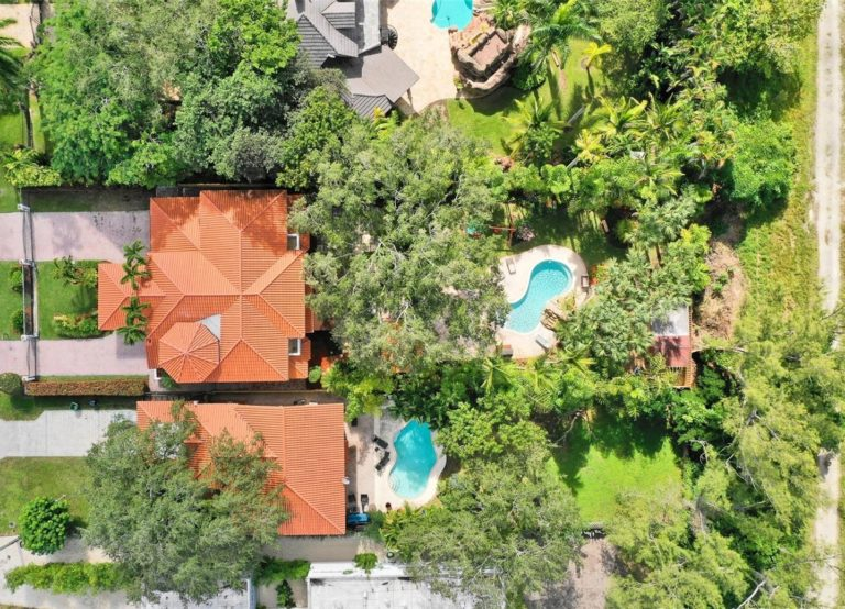 Palm Miami photo06