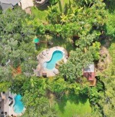 Palm Miami photo08