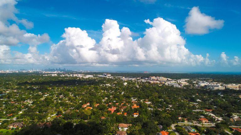 Palm Miami photo01
