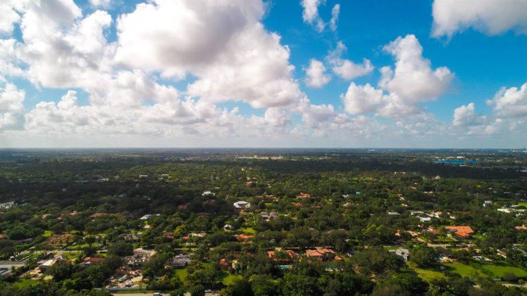 Palm Miami photo03