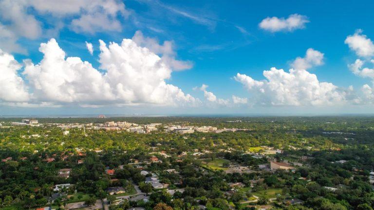 Palm Miami photo02