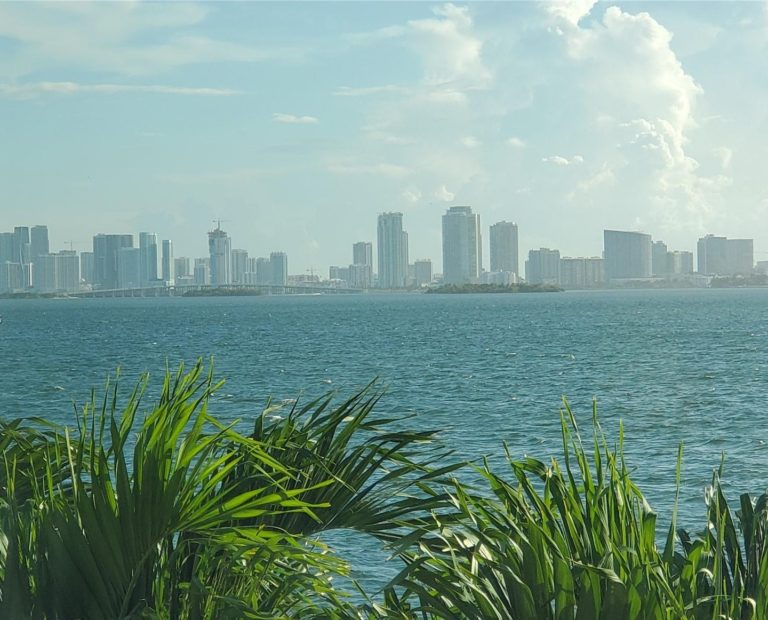 Treasure Island photo14