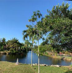 Coral Park Estates photo07