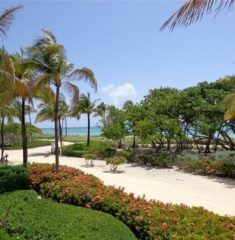 The Plaza of Bal Harbour photo22