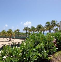 The Plaza of Bal Harbour photo21