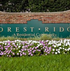 Forest Ridge photo07