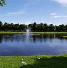 The Reserve At Doral West - 08 - photo