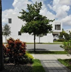 Doral Commons Residential photo07