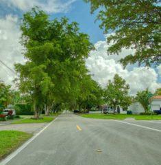 Central Miami - 11 - photo